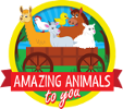 Amazing Animals To You Logo